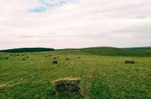 为了牛羊安全过冬,牧民们正收割牧草,被打困得牧草好像饼干,而割完的草地更开阔,好想像个孩子一样光着脚