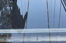 最中国的浙江开化根宫佛国赶时髦地建了一座高空玻璃桥,还是具破裂效果的,行走其上,有假装怕的,有真怕的