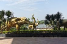 这里是台山市康桥温泉度假中心,图中的大象就是康桥温泉酒店的正大门,门外的雕塑,这个度假中心相当的大,