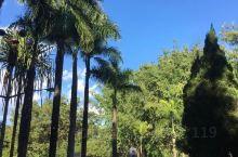 """莫里热带雨林景区位于潞西市、瑞丽市和陇川县交接区的瑞丽市一侧,瑞畹桥东北约5公里处。莫里又被称作""""扎"""