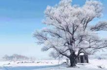 雪乡详细攻略来咯 本次出行的路线推荐给大家: 哈尔滨+东升雪谷+雪乡+二浪河+亚布力 推荐