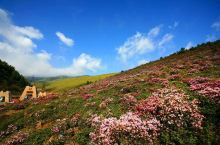 格萨拉生态旅游区位于攀枝花市盐边县西北部的岩口乡、洼落乡、温泉乡及箐河乡境内,地处四川、 云南两省交