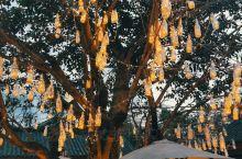 青城山六善酒店的独栋别墅,色调客房温暖而舒适,中国古钱币布币造型的门卡,历史文化品位十足,酒店的感谢