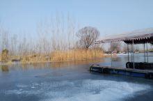 冬季的白洋淀安静美丽,由于南水北调放水,水面没有结冰,少了以往冰少运动了乐趣,但是多了一份安静的遐想
