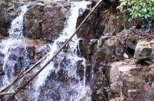 洗澡用的水泉水、吃的新挖冬笋!可以早起晨跑! 云鹿·莫干山开臣璞居温泉美墅