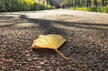 【灵源公园】漫步在通往灵源山的休闲步道上 灵源公园,位于灵源山脚下的灵水社区,这个地方是灵源山的起点