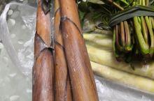 贵州省荔波县的特有的野菜——水蕨菜,炒来吃非常好吃。还有苦笋,香椿,也是不错的。