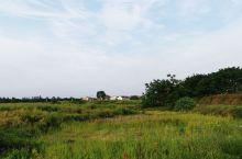乡村景色(1)