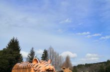 九州野生动物园 九州·日本   九州·日本   今年一月份陪同女儿和她的同学一家来到了日本九州岛。