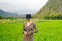 越南北部小众旅游,田园山谷麦洲 MaiChou 麦洲在越南北部,是个田园诗般的山谷,周围小山环绕,跟