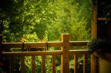 【今日#芒种#&周五,距离周末假期不足24小时啦!!】 会呼吸的房子丨全实木材料搭建而成的木屋; 推