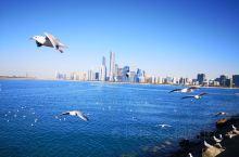 波斯湾海岸线,海水碧蓝,水天一色,海鸥自由飞翔,微风轻轻拂面,靠近阿布扎比民俗村的滨海大道,给您不一