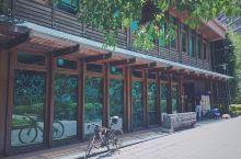 不愧是公认的全球最美图书馆之一,北投图书馆