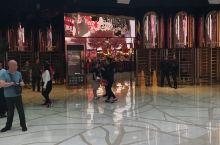 娱乐场不算很大,但是很豪华。