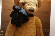 唯妙唯肖的泰迪熊