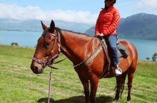 【新西兰皇后镇 | 瓦尔特峰骑马体验】  抢到了瓦尔特峰高原农场在平安夜的最后一个骑马名额。上次来农