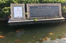 番禺宝墨园,是一所集清宫文化、岭南古建筑、岭南园林艺术、珠三角水乡特色于一体的园艺艺术公园。