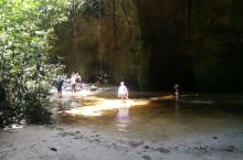 亚马逊丛林给一般游客游览的路线一般都在浅表,步行几公里就会折返,如果要深入,就得向旅游公司专门订线路
