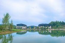 浙江东阳凤凰谷天澜度假酒店,坐落在美丽的凤凰山山谷之中,距离杭州不到两小时车程,距离横店影视城15分