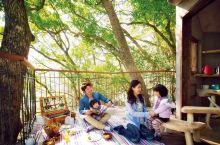 静 冈 住进儿时梦想中的树屋 | 森林空中基地Kusu-Kusu 户外指数: 运动强度:老少皆宜 在