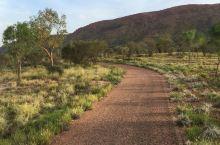 、Larapinta Trail:挑战自己的徒步自由行,感受大自然的天然风光!      Larap
