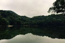 """石门国家森林公园位于广东从化东北部,有""""广州香山""""之美称。公园碧水环抱,绿岛成荫。每逢秋冬季节,漫山"""