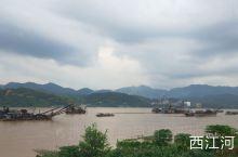 德庆印象   德庆以西江河贯穿,河鲜肥美,药材闻名,小小的县城是我们怀旧的回忆。漫步河堤,一排椅子,