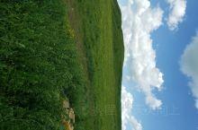 草原  蓝天  白云  蒙古包