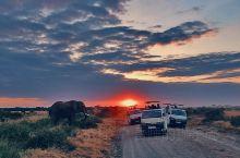 又是一年迁徙时,回忆起去年八月在肯尼亚安博塞利的偶遇,夕阳西下、非洲大象、非洲大草原,那份壮丽,依然