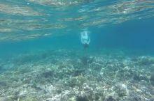 浮潜好地方,水清浪小