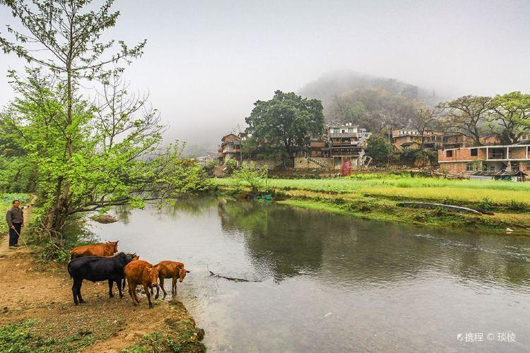 Bamei Village3