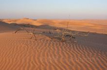 """可以在这里进行惊险刺激的""""冲沙""""活动,从十几米高的沙丘上搭乘吉普车俯冲而下,人、车都随着沙丘颠簸冲刺"""