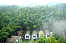 置于一片云雾飘渺见的蜀南竹海  它就像是一个隐居者的故乡,居于远山,不沾世俗,竹林间雾气缭绕,一声禅