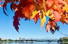 Ottawa | 初秋的渥太华,枫叶开始慢慢变换色彩,享受美景的季节!了解一座城市最好的方式,就是用
