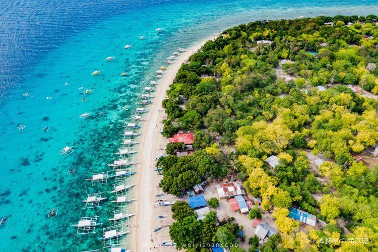 Balicasag Reef4
