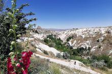鸽子谷  是一个很优美的山谷,到处都是石头,石头上有许多密密麻麻的洞眼,几乎走到跟前才能看清