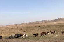 美丽的内蒙古大草原