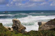 岩石上栖息了无数的塘鹅,身后海浪翻滚,景色非常漂亮。