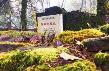 驱车2个多小时就到了安康石泉县城,鬼谷岭国家森林公园因中华智圣鬼谷子而得名,景区位于位于北纬33°的
