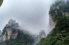 第一天中午从南门进去爬山游览黄石寨,云雾山中,恍惚若仙境,第二天也是从南门进先坐环保车然后坐索道至杨