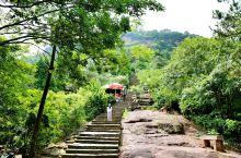 在天台山玩的时候还去了赤城山,这个山没什么游客去。山不是很高,一圈下来也就一个多小时。