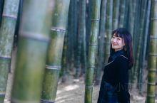 釜山行 九山治愈森林,森林氧吧   九頭山林这个地方光听名字就觉得很神秘了。   从南浦过去大约一小