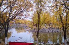 世纪公园之深秋