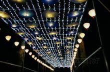 东湖灯会 各式各样的形式,流光溢彩,让人目不暇接,是一场不容错过的灯光盛会。就是人有点多,降低了体验
