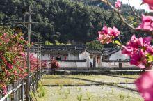 广东梅州大埔的张弼士应该很多人都知道,清朝时期的有钱人,资产达到了8000万两。就是他,创办了张裕酒