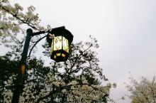 2月份的 杭州·浙江   太子湾公园  真的是我最钟意的地方了!!很大自然了。置身于太子湾公园时,身