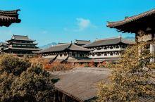 带你领略中国根雕艺术的魅力——根宫佛国文化博物馆 趁着周末跟朋友一起出发去衢州的开化打卡,去之前研究