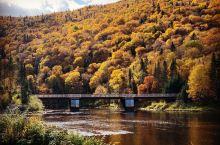满城尽带黄金甲之体验—加拿大魁北克省雅克卡迪亚国家公园,在魁北克入住的三天里,白天为避开景区密集的游