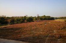 19年的清明,四天假,觉得从沈阳自驾到丹东宽甸,听说这是中朝边境,风景迤逦。 选来选取酒店,想选一家