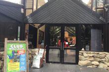 新西兰基督城唯一的开放式动物园一欧拉那野生动物园,在这里可以与小动物亲密接触,观赏到奇异鸟。